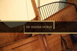 De Roosa Hoeve